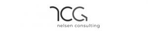 Nelsen Consulting 2